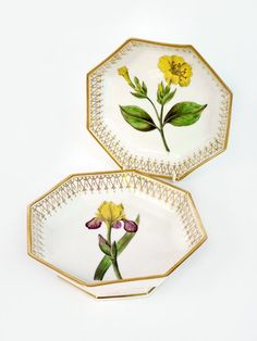 A pair of Continental octagonal porcelain Dishes, 19th century, each painted with named botanical specimens, Variegated Iris and Marvel of Peru, 20.5cm (2)