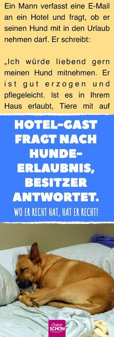 Hotel-Gast fragt nach Hunde-Erlaubnis, Besitzer antwortet. #hund #hotel #tierlieb #tierfreund #hausordnung #urlaub