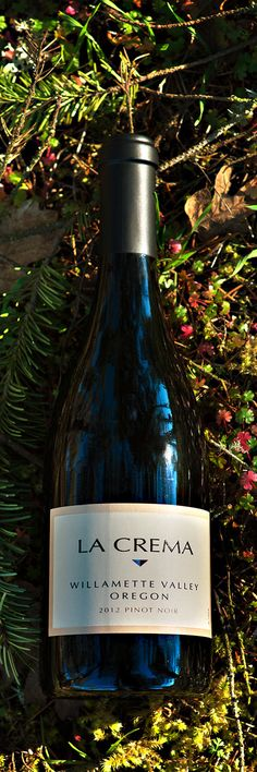 We're proud to announce our first-ever Oregon Pinot Noir. Learn more about this exciting new wine from La Crema:
