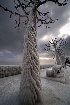 Aftermath of an ice storm in Geneva: Switzerland: by James Forsyth
