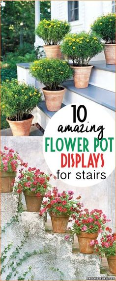 Amazing Flower Pot Displays on Stairs. Line your outdoor stairs and patios with these stunning pots. Beautifully potted outdoor pots for anywhere. Tips to making your home look amazing with curb appeal.