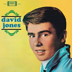 Davy Jones (The Monkees) - David Jones Limited Edition 180g Vinyl LP