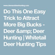 Do This One Easy Trick to Attract More Big Bucks - Deer & Deer Hunting | Whitetail Deer Hunting Tips
