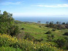 Portuguese Bend Reserve, Palos Verdes Peninsula