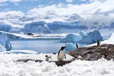 Antarktis-Kreuzfahrt