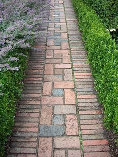 Brick path at Sissinghurst