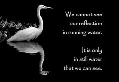 """We cannot see our reflection in running water. It is only in still water that we can see."" ~Taoist #proverb"