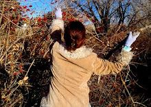 Wild Things in December - The Best Foraging Recipes 2012 | Hunger and Thirst