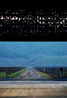 Dominus winery by Herzog & He Meuron - Napa Valley California 1998