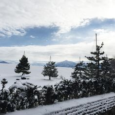 On instagram by cey_jp #landscape #contratahotel (o) http://ift.tt/1OPUlFU today  #toyama #tateyama #mounted #japan #snow #cold #view #sight #scene  #Scenery