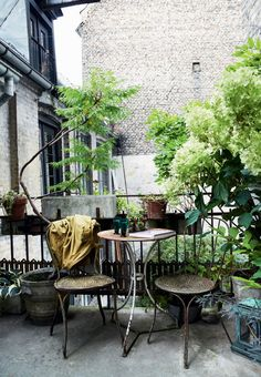 Amazing apartment balcony with vintage furniture and a lot of green plants.