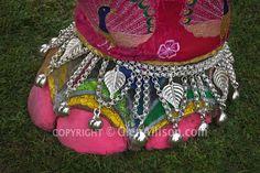 India, Rajasthan, Jaipur, Painted Elephant Festival
