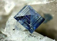 Anatase Susa Valley, Torino Province, Piedmont, Italy mm Collection et Photo Matteo Chinellato Cool Rocks, Beautiful Rocks, Minerals And Gemstones, Rocks And Minerals, Natural Crystals, Stones And Crystals, Gem Stones, Mineral Stone, Rocks And Gems