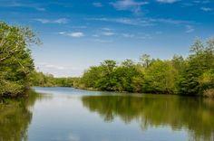 Lake Paliastomi – Kolkheti National Park. Georgia