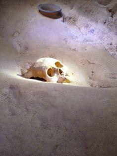 Ancient bones Mayan Cave,Belize,CA