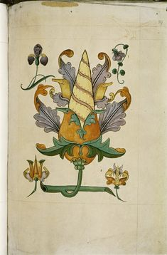 The Tudor pattern book MS. Ashmole 1504 - Szukaj w Google