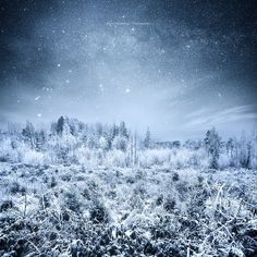 Frosty Night by mariuskasteckas via http://ift.tt/2gES0Cy