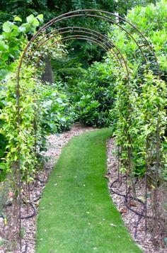 Abinger Garden Rose Arch by Muntons Traditional Plant Supports, the perfect gift for Explore more unique gifts in our curated marketplace. Plants For Raised Beds, Raised Garden Beds, Garden Crafts, Garden Projects, Garden Ideas, Wooden Roses, Natural Pond, Garden Arches, Rose Trees