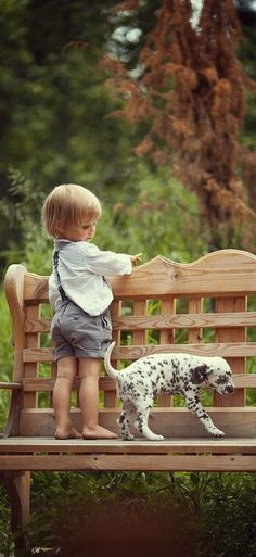 """""""No one appreciates the very special genius of your conversation as much as the dog does."""" — Christopher Morley [pinned by PartyTalent.com]"""
