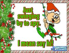 Just swinging by to spy. I mean say hi! christmas quotes funny christmas quotes christmas greetings christmas pics quotes for christmas Christmas Quotes, Christmas Pictures, Christmas Humor, Christmas Greetings, Christmas Time, Xmas, Time Pictures, Summer Pictures, Pictures Images