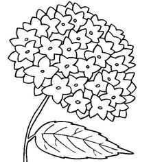 Online Coloring Pages, Coloring Pages For Girls, Cartoon Coloring Pages, Colouring Pages, Free Coloring, Adult Coloring, Hydrangea Colors, Hydrangea Flower, Hydrangeas