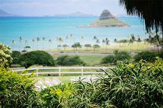Kualoa Ranch Modern Weddings Hawaii Destination Bride Inspiration  + Hawaii Wedding Vendors #hawaii #maui #wedding #paradise #marriage