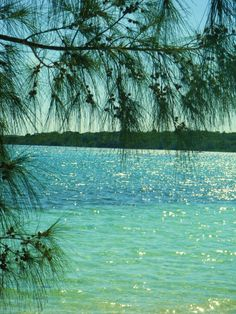 Last View of The Lagoon, Onto Stingray Cove! ... click to see full size!