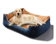 Give your buddy a good night rest with a washable XL pet bed mat cushion at 50% off for only $49.99 (was $99.99) – a waterproof, soft, and durable bed that will give your pet a comfortable sleep. Bed Mats, Bed Mattress, Pet Beds, Your Pet, Bean Bag Chair, Dog Cat, Rest, Cushions, Sleep