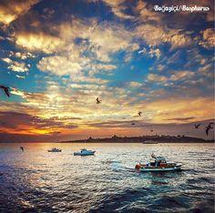 今年冬天很冷!暫時跟燦爛的陽光說再見了,氣象預報說今日起伊斯坦布爾將迎接入冬以來的第三波下雪日。 ©tolgy75