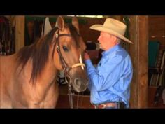 How to Properly Fit and Adjust a Snaffle Bit. Do you know the basic tidbits? Make sure you know how to properly fit and adjust a snaffle bit with Charles Wilhelm Training