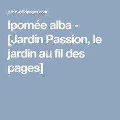 Ipomée alba - [Jardin Passion, le jardin au fil des pages]