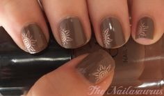 The Nailasaurus: Brown