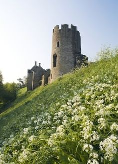 frome england medieval | In a picturesque valley of the river Frome, on the border between ...