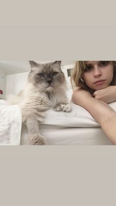 Carlson Young, Cats, Animals, Instagram, Gatos, Animales, Animaux, Animal, Cat