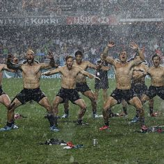 The New Zealand Rugby Team!