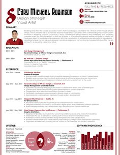 updated resume format 2012 professional resume templates for all formats chronological functional
