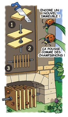 Welcome ladybug in the garden - the nesting box - Amenagement Jardin Recup Garden Art, Garden Design, Box Garden, Carpenter Bee Trap, Slugs In Garden, Bug Hotel, Garden Online, Garden Animals, Beneficial Insects