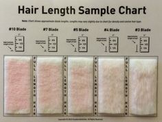 Dog grooming clipper blade chart by breed and coat type dog shave blade sample chart for grooming by kreationsbykohler on etsy urmus Gallery