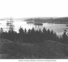 Esquimalt Harbour with a number of Royal Navy ships at anchor ca. 1894 :#yyj