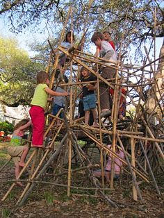 Bamboo and Stick Fort Building.. http://www.pinterest.com/thesticklets/fort-fabulous-inspiration/