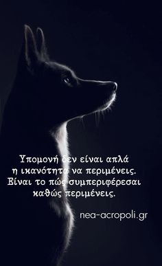 Greek Quotes, True Words, Beautiful Pictures, Inspirational Quotes, Sayings, Study, Running, Coffee, Fitness