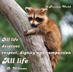 All life deserves respect, dignity and compassion. ALL life! ~ A.D. Williams