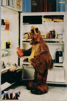 ALF!!!!!!!!!!!!! Oh I miss the 80's and 90's.  Although....He IS Still on TV! :)  Watch an episode every night
