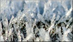 Name:  ice-frost-zap.jpg Views: 201 Size:  179.6 KB