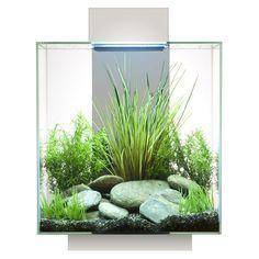 Hagen 12 Gallon Fluval Edge Aquarium Kit   eBay