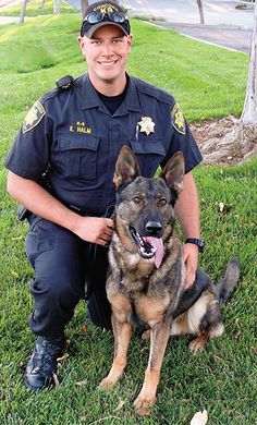 Divine Doggies: Meet five canine heroes from our backyard. By Peter Crooks Military Working Dogs, Military Dogs, Police Dogs, Hot Cops, Dog Stories, War Dogs, Men In Uniform, Therapy Dogs, Service Dogs