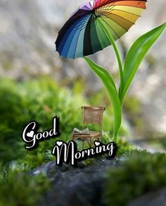 Good Morning (hearts) cute scene with tulip umbrella shading a chair and morning paper (? Very Good Morning Images, Good Morning Images Flowers, Good Morning Nature, Good Morning Images Download, Good Morning Love, Quotes About Good Morning, Rainy Morning Quotes, Good Morning Hindi Messages, Good Morning Kisses