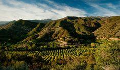 Luxury Resorts Santa Barbara   Ojai Valley Inn & Spa – About Ojai   Hotels Ojai