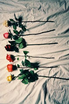 """cherry-and-also-bomb: """" ✡❀✟ vintage/grunge ✟❀✡ """" Grunge Photography, Art Photography, Fotografia Grunge, Vintage Grunge, Love Flowers, Pretty Pictures, Flower Power, Bloom, Tumblr"""
