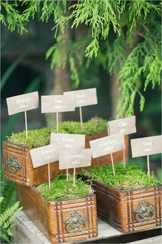Vintage sewing drawers + moss make a lovely escort card display. This is really pretty and looks simple enough to make.
